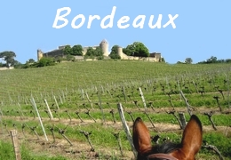 Horse riding holiday Bordeaux