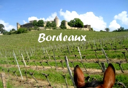 Horse riding holiday in Bordeaux