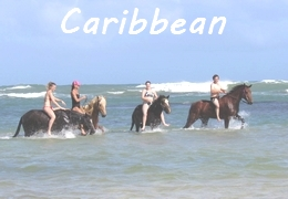 Caribbean horse riding holiday