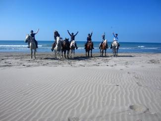 Horse riding on the Camargue beach