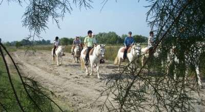 horseback ride in camargue