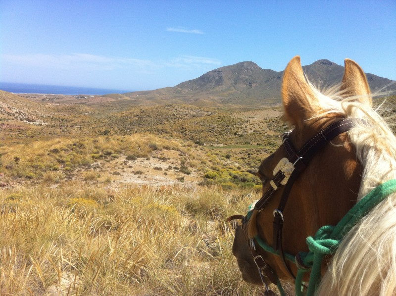 horseback riding holiday in Spain