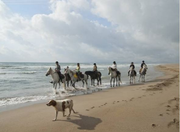 equestrian holiday in Spain