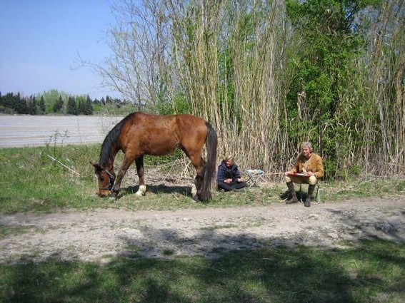 camargue horseback riding vacation