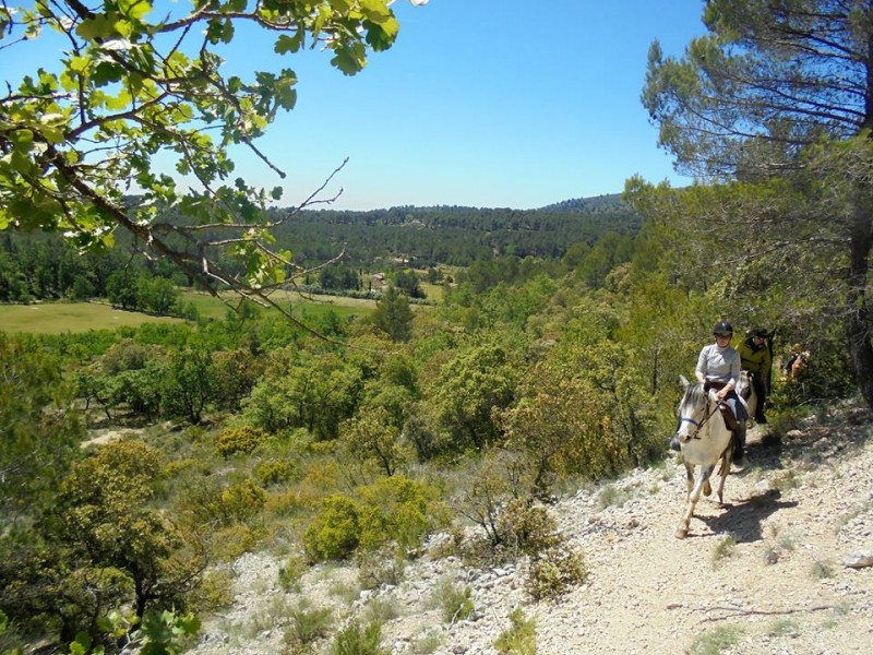 horseback riding holiday in provence