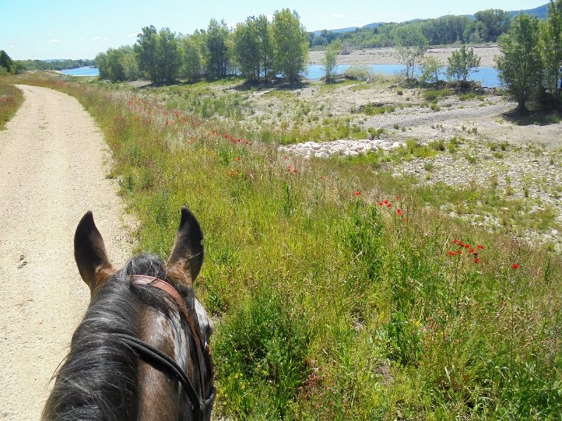 horseback riding vacation in provence