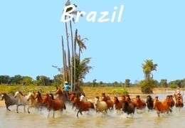 Equestrian holiday in Brazil